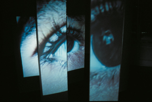 Ruth Schnell: Der andere Beobachter (1991-1992) (Videoinstallation)